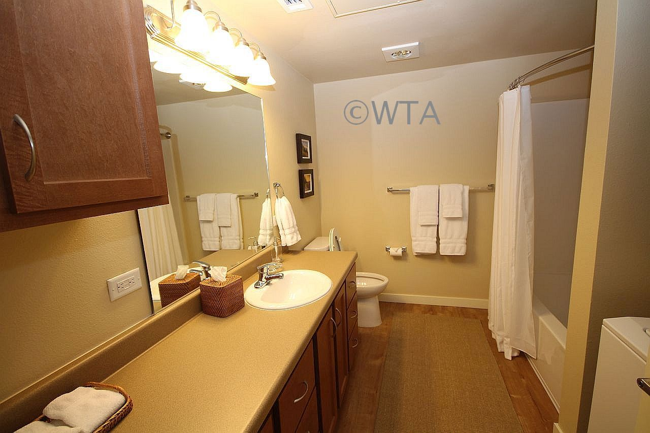 image 7 unfurnished Studio bedroom Apartment for rent in Wells Branch, Central Austin